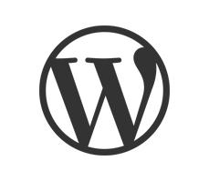 Desarrollo en  Wordpress